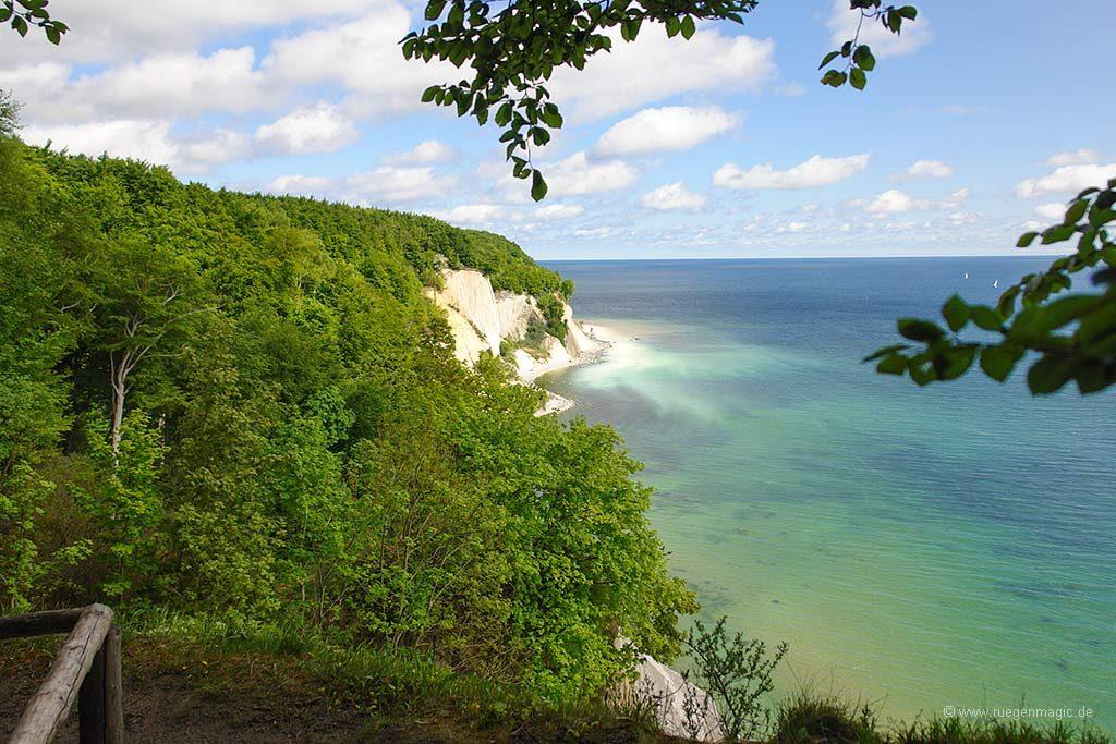 Umfeld: Kreideküste der Insel Rügen
