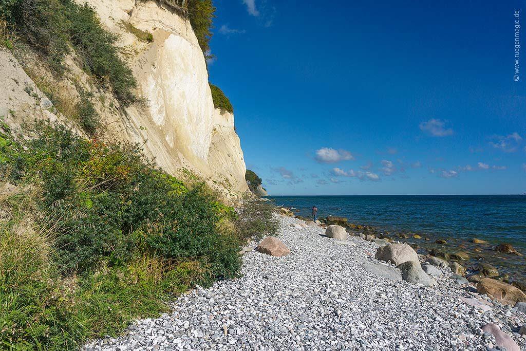 Umfeld: Strand der Kreideküste