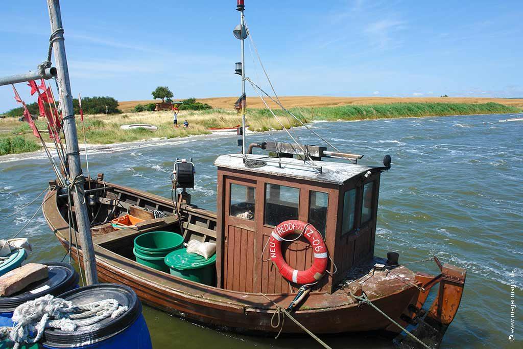 das Umfeld: Fischkutter im Hafen von Neu Reddevitz