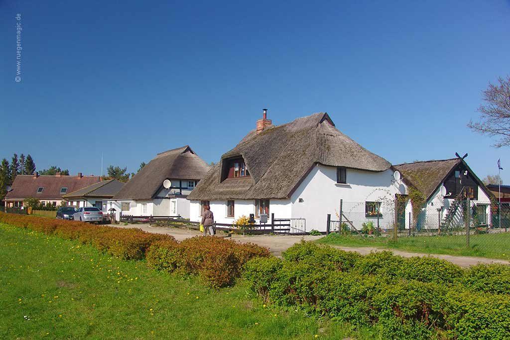 das Umfeld: der Dorfanger von Zirkow
